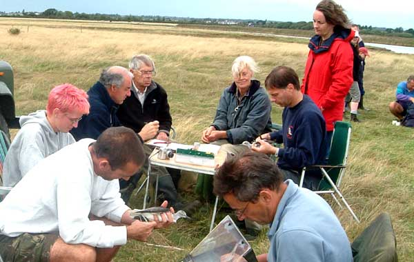 Picture of the Farlington Ringing Group members recording data